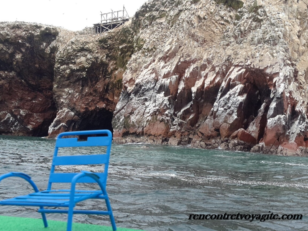 Iles Ballestas Pérou