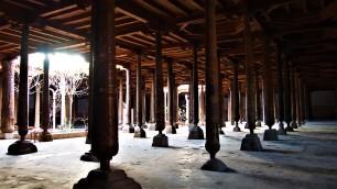 Foret de colonnes