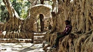 Angkor???