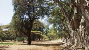 Un joli petit parc ;)