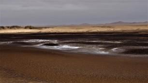 Dunes côtières