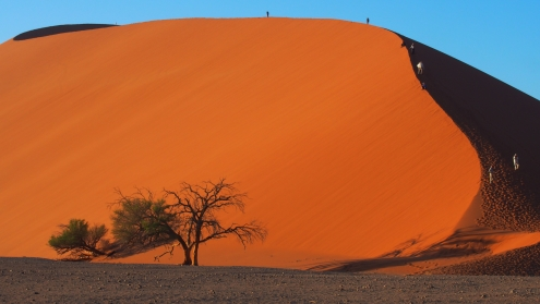 Dunes en paraboles