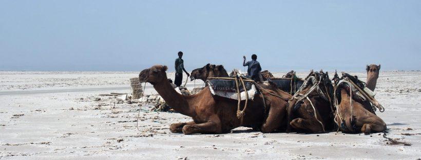 lac assal rencontre avec le peuple afar ethiopie afrique carnet de voyage rencontres et voyagite le blog d une fille qui voyage surtout pour la rencontre de l autre