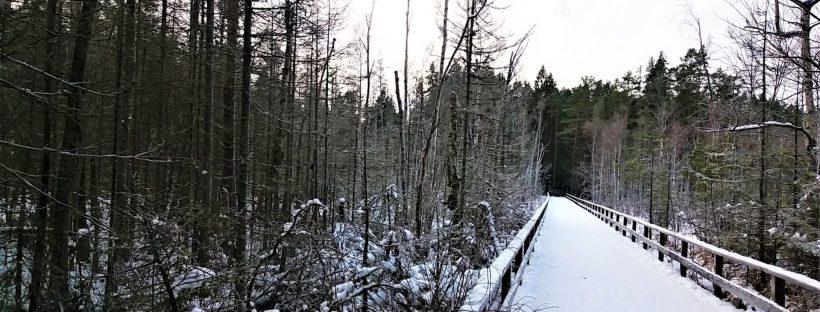 Stockholm et ses parc en hiver Suede europe rencontres et voyagite le blog d'une fille qui voyage surtout pour la rencontre de l'autre