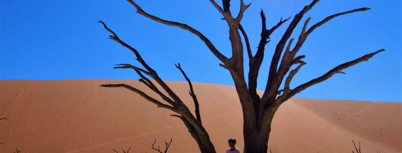 le plus beau désert au monde namibie afrique rencontre et voyagite le blog d'une fille qui voyage surtout pour la rencontre de l'autre