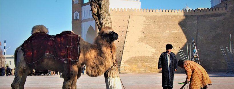 Boukhara la sacrée carnets de voyage ouzbekistan asie rencontres et voyagite le blog d'une fille qui voyage surtout pour la rencontre de l'autre